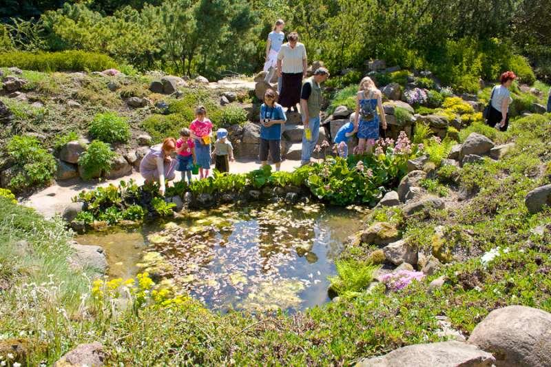picture 4 arboretum